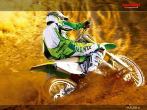 Kawasaki_KX_250_Motocross_Bike